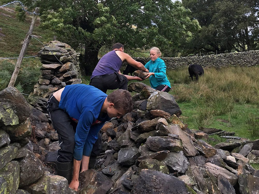 Dry Stone Walling - Lakeland Farm Visitor Centre